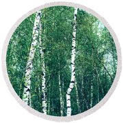 Birch Forest - Green Round Beach Towel