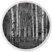 Birch Trees No.0148 Round Beach Towel