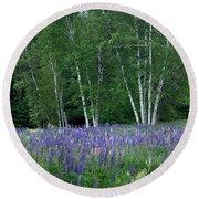 Birches In The Blue Lupine Round Beach Towel