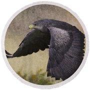 Bird 3 Round Beach Towel