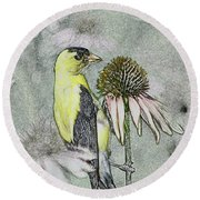 Bird Eating Seeds For One Digital Art Round Beach Towel