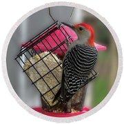 Bird Feeder Wp 06 Round Beach Towel