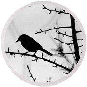 Bird In B And W Round Beach Towel