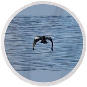 Bird In Flight Round Beach Towel