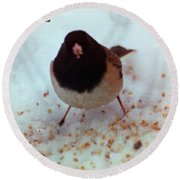 Bird In Snow Round Beach Towel