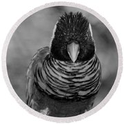 Bird In Your Face Bw Round Beach Towel
