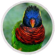 Bird In Your Face  Round Beach Towel