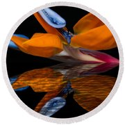 Bird Of Paradise Reflective Pool Round Beach Towel
