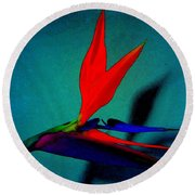 Bird Of Paradise With Blue Background Round Beach Towel