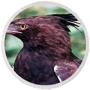 Bird Of Prey In Watercolor Round Beach Towel