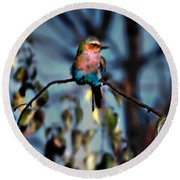 Bird On A Limb Round Beach Towel