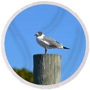 Bird On A Pole Round Beach Towel
