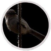 Bird On A Rope 2 Round Beach Towel