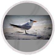 Bird On The Shoreline Round Beach Towel