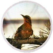 Bird On The Wire Round Beach Towel