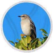 Bird On Tree Top Round Beach Towel