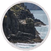 Bird Paradise On Cook Strait Round Beach Towel