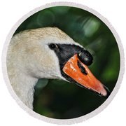 Bird - Swan - Mute Swan Close Up Round Beach Towel