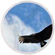 Bird The Black Vulture Round Beach Towel