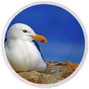 Birds 9 Round Beach Towel
