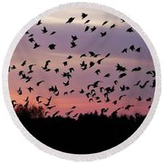 Birds At Sunrise Round Beach Towel
