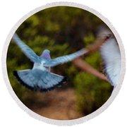 Birds In Flight 030515ab Round Beach Towel