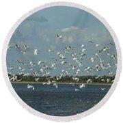 Birds In Flight Round Beach Towel