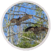 Birds Of A Feather Flock Together Round Beach Towel