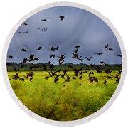 Birds Of The Wetlands V11 Round Beach Towel
