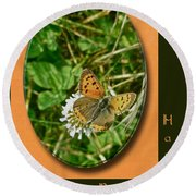 Birthday Greeting Card - American Copper Butterfly Round Beach Towel