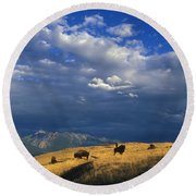 Bison Back From The Brink Round Beach Towel