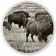 Bison Herd Bw Round Beach Towel