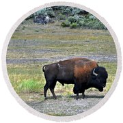 Bison In Lamar Valley Round Beach Towel by Marty Koch