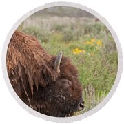 Bison In The Flowers Ingrand Teton National Park Round Beach Towel