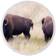 Bison Painting Round Beach Towel