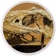Bistahieversor Dinosaur Skull Fossil Round Beach Towel