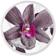 Black And Purple Orchid Round Beach Towel