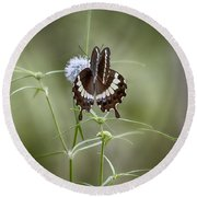 Black And White Butterfly V2 Round Beach Towel
