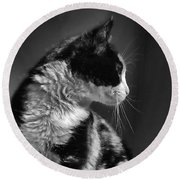 Black And White Cat In Profile  Round Beach Towel