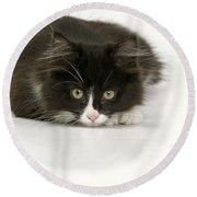 Black-and-white Cat Round Beach Towel