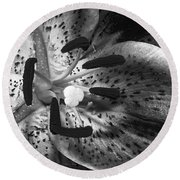 Black And White Lily Up Close Round Beach Towel