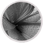 Black And White Lily Z Map L Round Beach Towel