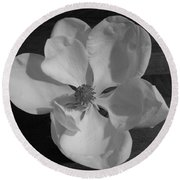 Black And White Magnolia Blossom Round Beach Towel