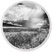 Black And White Meadow Round Beach Towel