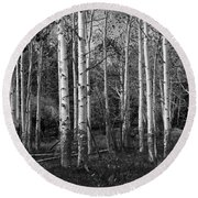 Black And White Photograph Of Birch Trees No. 0126 Round Beach Towel