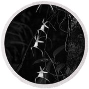 Black And White Quad Ghost Orchid Round Beach Towel