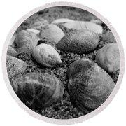 Black And White Seashells Round Beach Towel