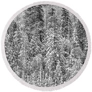 Black And White Trees In A Forest Round Beach Towel
