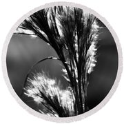 Black And White Vegetation In The Dunes Round Beach Towel