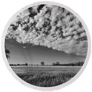 Black And White Wheat Field Round Beach Towel
